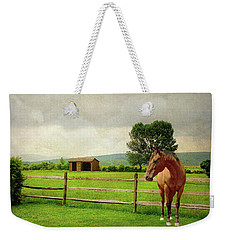 Weekender Tote Bag featuring the photograph Stallion At Fence by Diana Angstadt