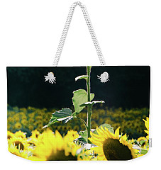 Weekender Tote Bag featuring the photograph Stand Out 2 by Andrea Anderegg
