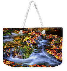 Standing In Motion - Leaves On A Rock 007 Weekender Tote Bag by George Bostian