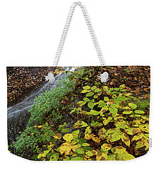 Weekender Tote Bag featuring the photograph Standing On The Edge by Dale Kincaid