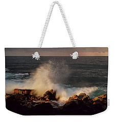 Weekender Tote Bag featuring the photograph Standing Strong by Pamela Walton