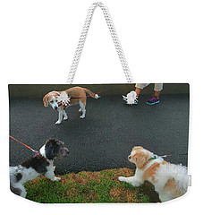 Weekender Tote Bag featuring the photograph Standoff by Roger Bester
