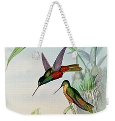 Star Fronted Hummingbird Weekender Tote Bag by John Gould
