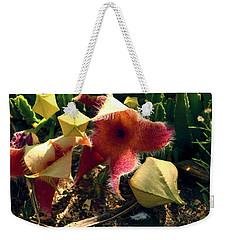 Starfish Of The Desert Weekender Tote Bag