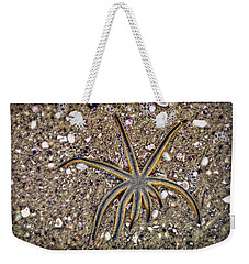 Starfish On The Beach Weekender Tote Bag by Robert FERD Frank