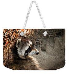 Staring Raccooon Weekender Tote Bag