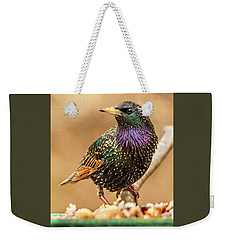 Starling In Glorious Color Weekender Tote Bag