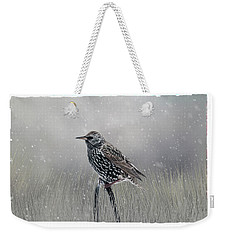Starling In Winter Weekender Tote Bag