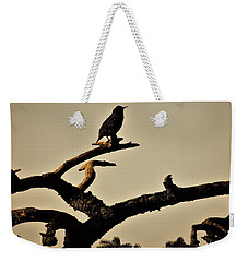 Weekender Tote Bag featuring the photograph Starling by Karen Horn