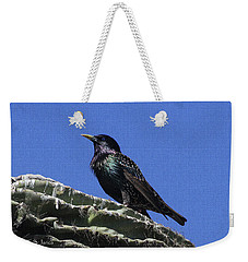 Weekender Tote Bag featuring the photograph Starling On Saguaro Arm by Tom Janca