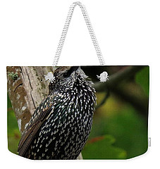 Weekender Tote Bag featuring the photograph Starling Pride by I'ina Van Lawick