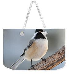 State Bird Of Massachusetts Weekender Tote Bag