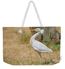 Stately Walking Cattle Egret Weekender Tote Bag