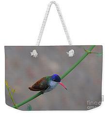 Stay Away From My Feeder Weekender Tote Bag by John Kolenberg