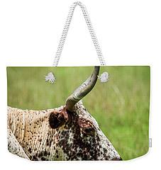 Weekender Tote Bag featuring the photograph Steer Portrait by Paul Freidlund