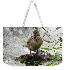 Weekender Tote Bag featuring the photograph Stepping Out On My Own by I'ina Van Lawick