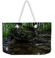 Weekender Tote Bag featuring the photograph Stevensville Brook In Underhill, Vermont - 1 by James Aiken