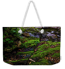 Weekender Tote Bag featuring the photograph Stevensville Brook In Underhill, Vermont - 2 by James Aiken