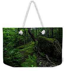 Weekender Tote Bag featuring the photograph Stevensville Brook In Underhill, Vermont - 3 by James Aiken