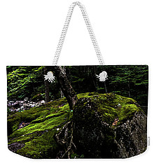 Weekender Tote Bag featuring the photograph Stevensville Brook In Underhill, Vermont - 4 by James Aiken