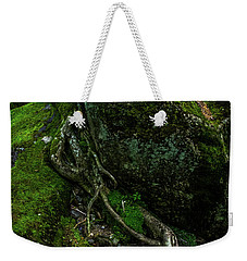 Weekender Tote Bag featuring the photograph Stevensville Brook In Underhill, Vermont - 5 by James Aiken