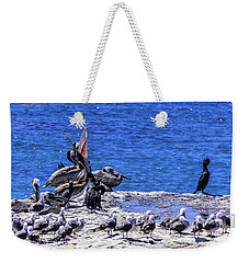 Pelican Sticking His Neck Out Weekender Tote Bag