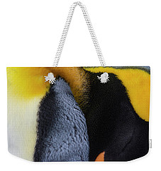 Weekender Tote Bag featuring the photograph Still Daydreaming by Tony Beck