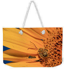 Weekender Tote Bag featuring the photograph Still Sleeping by Chris Berry
