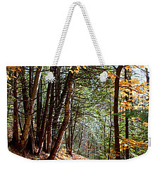 Stillness Weekender Tote Bag by Elfriede Fulda