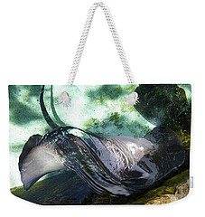 Weekender Tote Bag featuring the photograph Stingray Wave by Francesca Mackenney