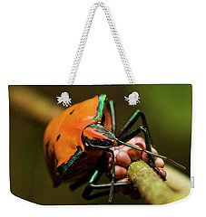 Weekender Tote Bag featuring the photograph Stink Bug 666 by Kevin Chippindall