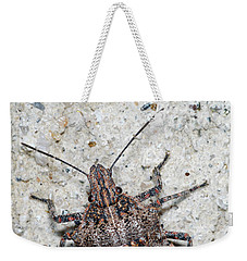 Weekender Tote Bag featuring the photograph Stink Bug by Breck Bartholomew
