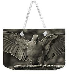 Stone Dove Landing Weekender Tote Bag by Jim Moore