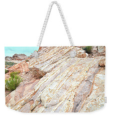 Weekender Tote Bag featuring the photograph Stone Feet In Valley Of Fire by Ray Mathis