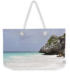 Stone Turtle Weekender Tote Bag by Glenn Gordon