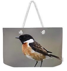 Stonechat Weekender Tote Bag by Terri Waters
