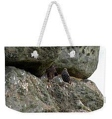 Weekender Tote Bag featuring the photograph Stonehenge Birds by Francesca Mackenney