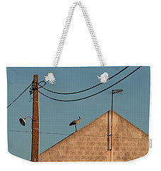 Stork On A Roof Weekender Tote Bag by Menega Sabidussi