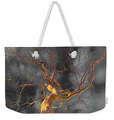 Storm Tree Weekender Tote Bag by Bruce Pritchett