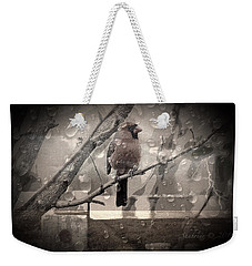 Stormy Window Weekender Tote Bag