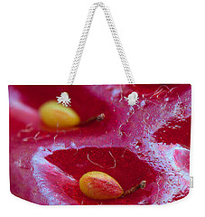Weekender Tote Bag featuring the photograph Strawberry Fields by Alexey Kljatov
