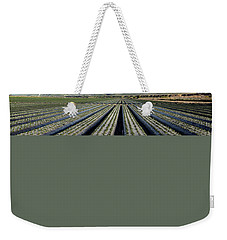 Weekender Tote Bag featuring the photograph Strawberry Fields Forever 3 by Floyd Snyder
