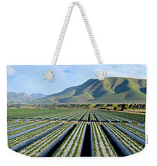 Weekender Tote Bag featuring the photograph Strawberry Fields Forever by Floyd Snyder