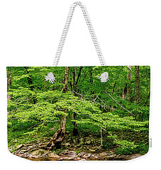 Weekender Tote Bag featuring the photograph Stream Side by Christopher Holmes