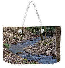 Weekender Tote Bag featuring the photograph Stream Up The Hollow by Denise Romano