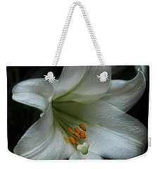 Weekender Tote Bag featuring the photograph Assurance by Connie Handscomb