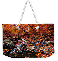 Weekender Tote Bag featuring the photograph Stress Relief by Edward Kreis