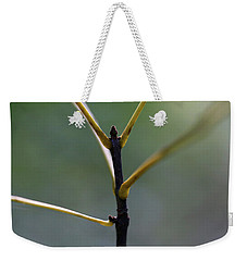 Stretching 2 Weekender Tote Bag by Mary Bedy