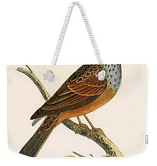 Striolated Bunting Weekender Tote Bag by English School