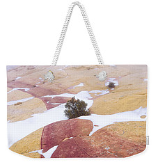 Weekender Tote Bag featuring the photograph Stripe by Chad Dutson